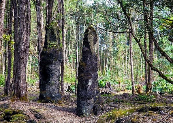 Núi lửa phun trào, rừng cây nham thạch xuất hiện - Ảnh 2.
