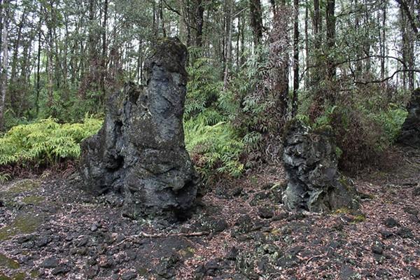 Núi lửa phun trào, rừng cây nham thạch xuất hiện - Ảnh 8.