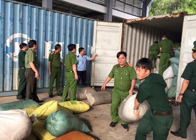 (NÓNG) Phát hiện hơn 10 tấn ngà voi và vảy tê tê nhập lậu tại Cảng Tiên Sa  - Ảnh 2.