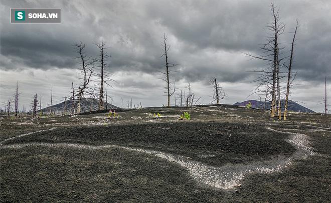 Nghĩa địa Quỷ: Vùng đất bí ẩn làm tê liệt la bàn ở Nga, đến nay khoa học vẫn tranh cãi - Ảnh 1.
