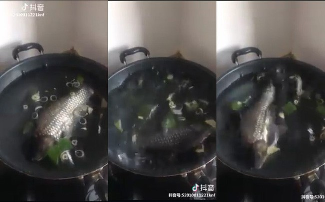Mẹ chồng thèm canh cá, nàng dâu hí hửng xắn tay vào bếp nhưng khi nhìn cá bơi trong nồi ai nấy đều sửng sốt - Ảnh 2.