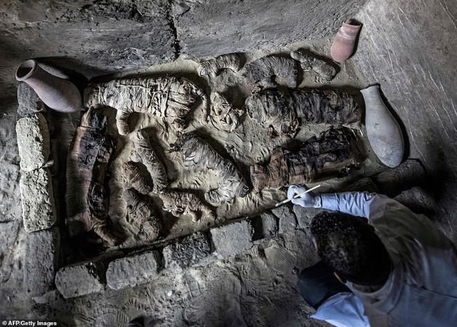 Cận cảnh xác ướp bọ hung và mèo bên trong ngôi mộ Ai Cập 4.500 năm tuổi - Ảnh 2.