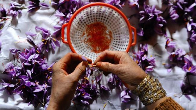Bí mật thú vị của saffron - gia vị đắt nhất thế giới gần 1 tỷ/kg từng được Nữ hoàng Ai Cập dùng dưỡng nhan sắc - Ảnh 6.