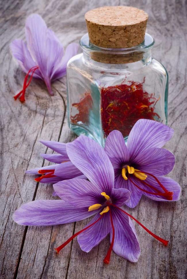 Bí mật thú vị của saffron - gia vị đắt nhất thế giới gần 1 tỷ/kg từng được Nữ hoàng Ai Cập dùng dưỡng nhan sắc - Ảnh 8.