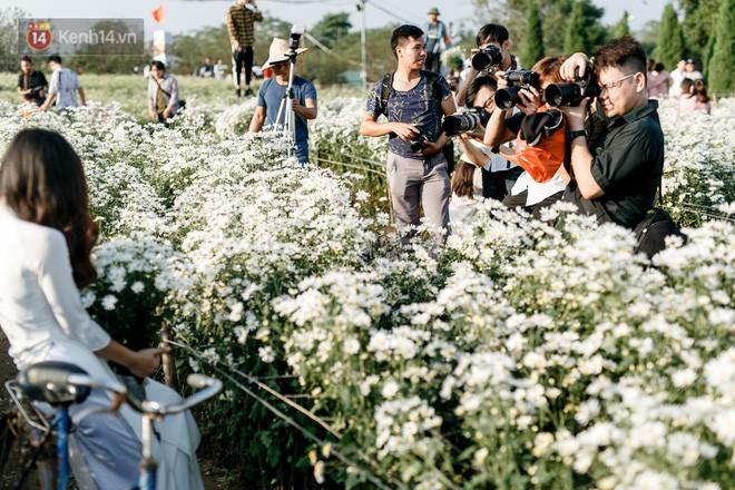 Vườn cúc hoạ mi ở Hà Nội thất thủ cuối tuần: 1 mét vuông có chục nhiếp ảnh gia và mẫu - Ảnh 16.