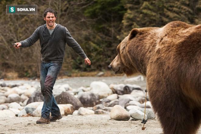 Cách gấu xám chỉ vài bước chân, đây là cách người đàn ông thoát hiểm trong gang tấc - Ảnh 1.
