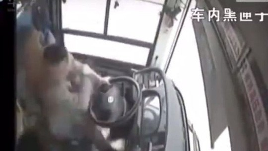 Tài xế và hành khách đánh nhau, xe buýt lao xuống sông giết chết 13 người - Ảnh 1.