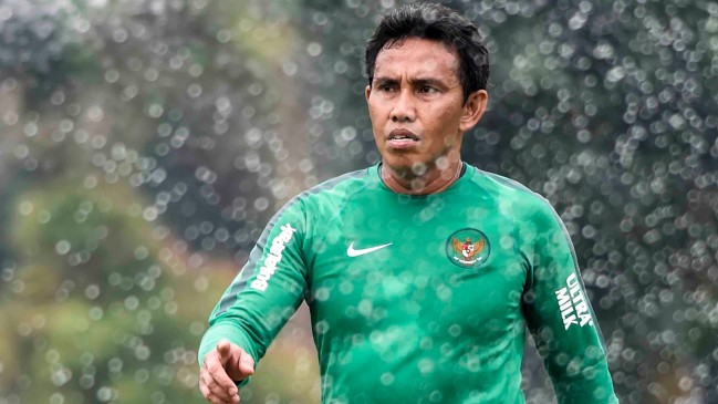 HLV Indonesia: Đoàn quân Park Hang-seo là ứng cử viên nặng ký vô địch AFF Cup 2018 - Ảnh 2.