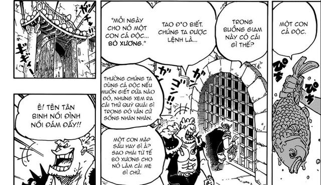 One Piece: Sức mạnh Gear 5 của Luffy thực chất là sự thức tỉnh của Trái Ác Quỷ? - Ảnh 6.