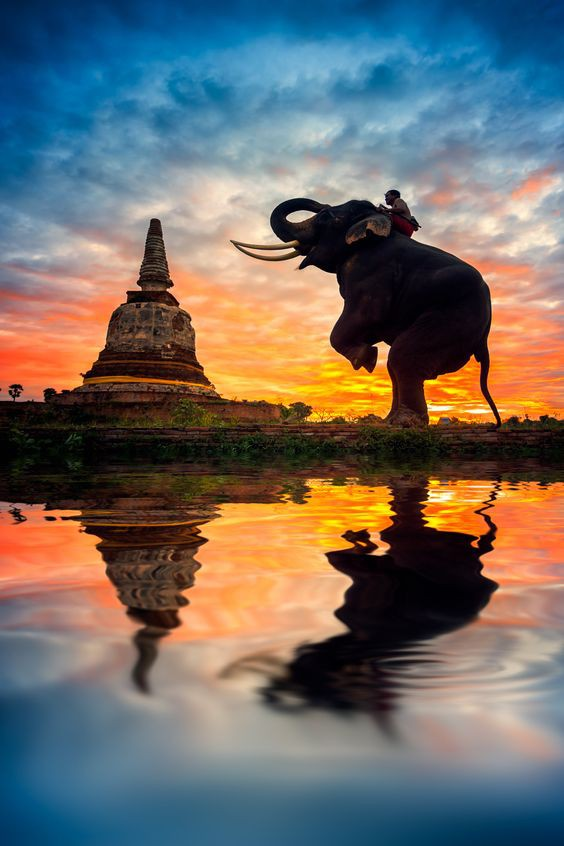 Hiểu rõ vận mệnh để làm chủ vận mệnh: 9 cách thay đổi số phận theo Phật giáo - Ảnh 1.