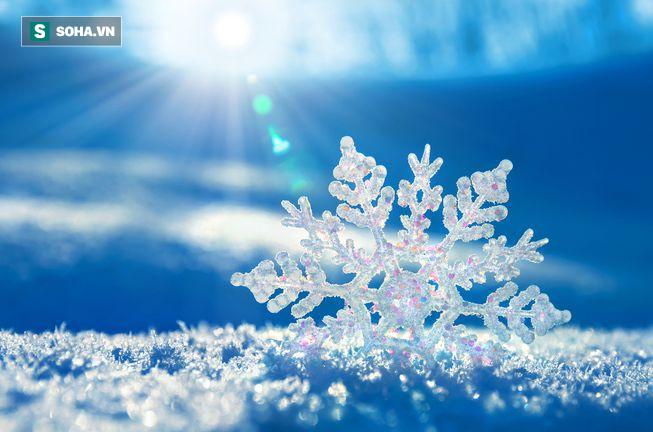 Câu hỏi dễ nhưng ít người đúng: Vì sao tuyết lại màu trắng?  - Ảnh 1.