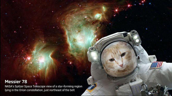 NASA làm app selfie bay giữa ngân hà, ra ngay ảnh chụp ngoài không gian như thật - Ảnh 2.