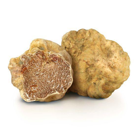 Truffle - loại nấm đắt nhất thế giới, thần dược phòng the, kim cương đen của nền ẩm thực: 140 triệu/kg - Ảnh 7.