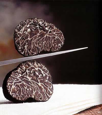 Truffle - loại nấm đắt nhất thế giới, thần dược phòng the, kim cương đen của nền ẩm thực: 140 triệu/kg - Ảnh 4.