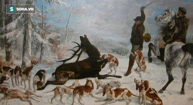 Bị dồn tới vách núi, hươu chống trả quyết liệt khiến bầy chó rụng như sung xuống vực - Ảnh 1.