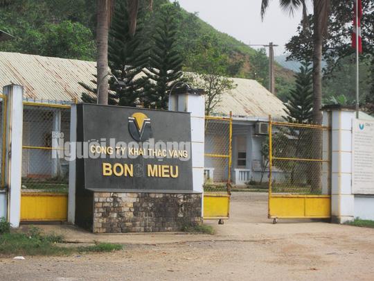 Vàng Bồng Miêu chính thức phá sản, để lại số nợ gần 1.000 tỉ đồng - Ảnh 2.
