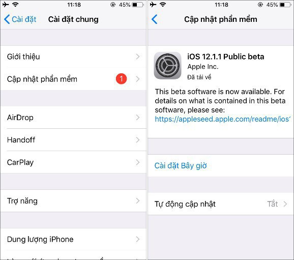 14 mẹo xử lý lỗi cơ bản mọi người dùng iPhone cần biết - Ảnh 3.