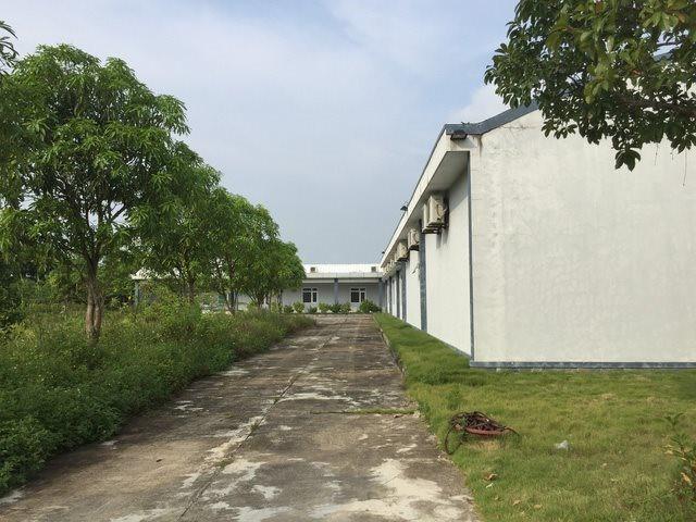 Dự án xây dựng bệnh viện hơn 200 tỷ bỏ hoang 8 năm - Ảnh 8.