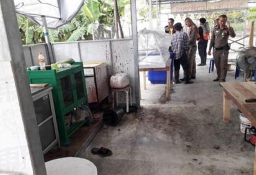 Cảnh sát Thái Lan họp báo lên tiếng vụ thịt người trong món ăn chay - Ảnh 2.