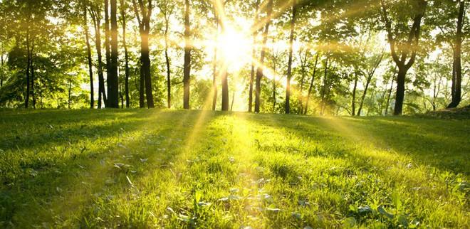 Các nhà tạo ra tấm pin Mặt Trời mới vừa trong suốt, lại vừa tự tạo được cả photon ánh sáng cho mình - Ảnh 2.