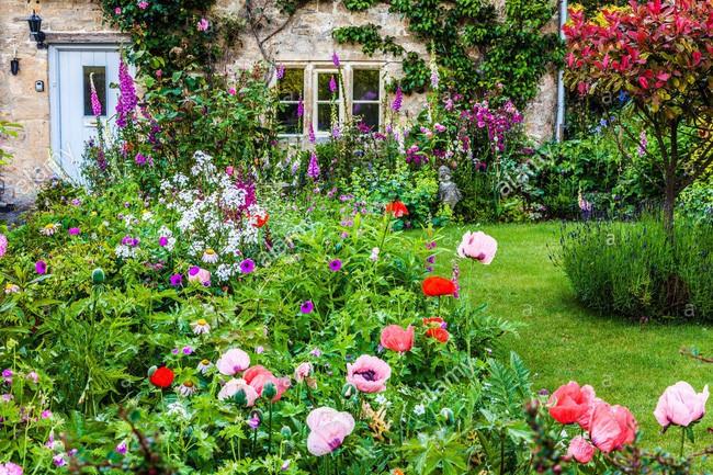 Chìm đắm trong thế giới cổ tích mang đậm vẻ cổ kính khi đến thăm ngôi nhà của những người yêu hoa - Ảnh 13.