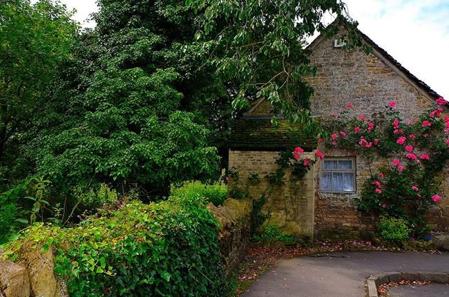 Chìm đắm trong thế giới cổ tích mang đậm vẻ cổ kính khi đến thăm ngôi nhà của những người yêu hoa - Ảnh 16.