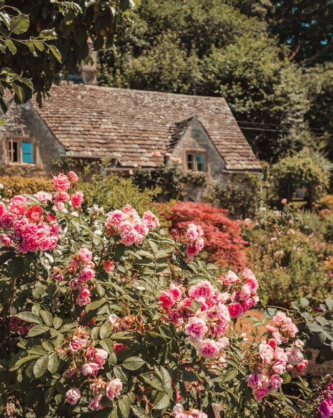 Chìm đắm trong thế giới cổ tích mang đậm vẻ cổ kính khi đến thăm ngôi nhà của những người yêu hoa - Ảnh 8.