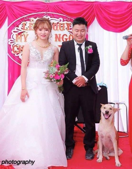 Cô dâu và chủ rể bị chiếm mất spotlight trong đám cưới vì một nhân vật không ai ngờ tới! - Ảnh 1.