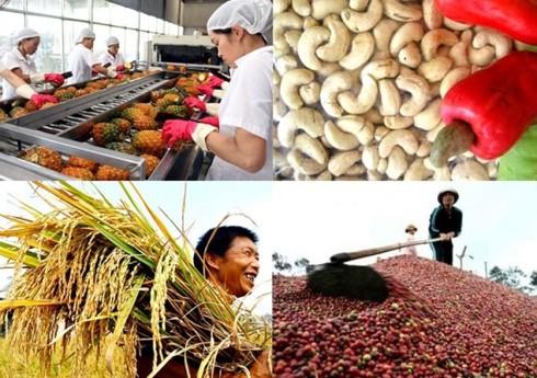 Ngành Nông nghiệp xuất siêu 7,45 tỷ USD trong 11 tháng - Ảnh 1.