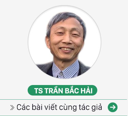 TS Trần Bắc Hải: Người Việt kém tiếng Anh vì không dũng cảm bằng trẻ con? - Ảnh 4.