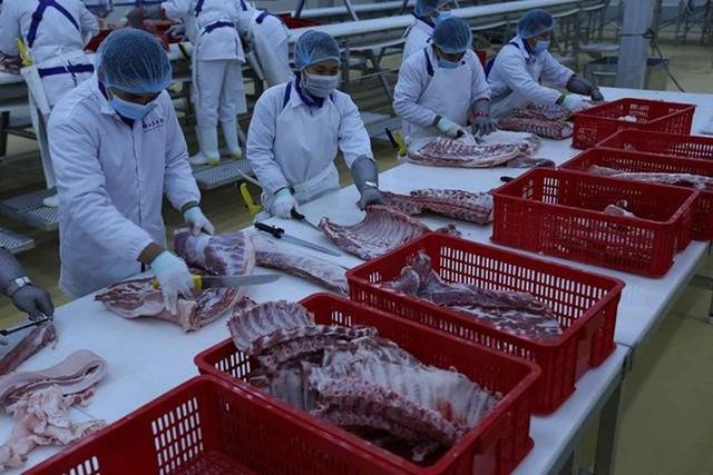 Nhà máy hơn 1.000 tỷ đồng và tham vọng của Masan với thị trường thịt 10,2 tỷ USD - Ảnh 1.