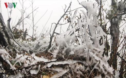 Tết dương lịch miền Bắc rét bậc nhất trong 10 năm, núi cao có mưa tuyết - Ảnh 2.