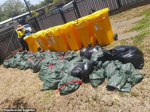 Hàng nghìn xác dơi từ trên trời rơi xuống khu dân cư ở Úc: Cảnh tượng như trong phim kinh dị - Ảnh 3.