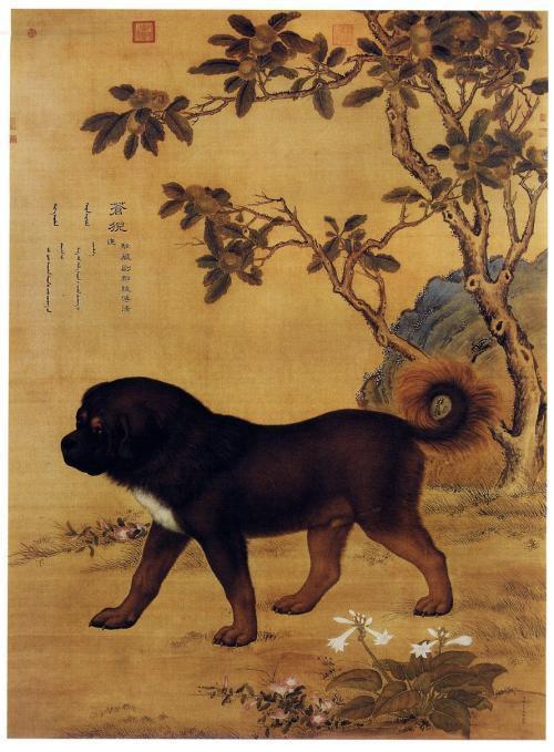 Phát hiện Án tìm chó trong mộ cổ và sở thích ít người biết của Tần Thủy Hoàng, Hán Vũ Đế - Ảnh 3.