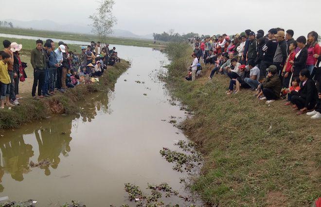 Người dân đổ xô đến xem một con cá nổi dưới mương ngày Tết - Ảnh 2.