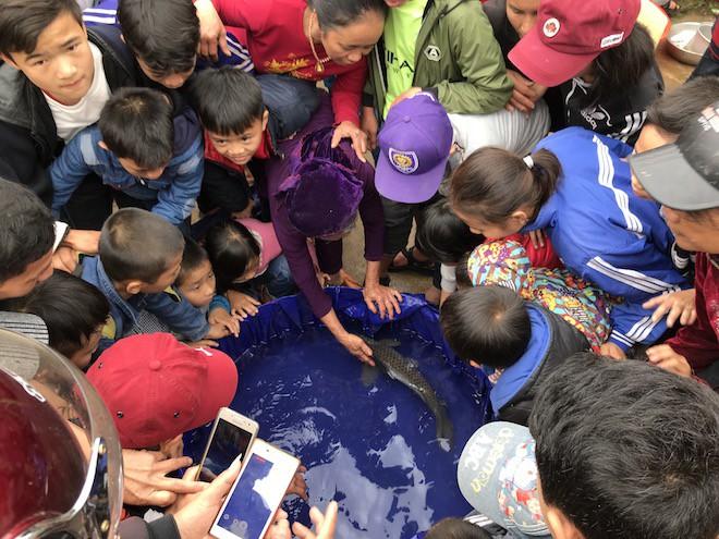 Đã bắt con cá nổi ở kênh mà người dân ùn ùn kéo đến xem mấy ngày Tết - Ảnh 9.