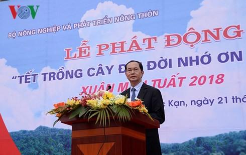 Chủ tịch nước phát động Tết trồng cây đời đời nhớ ơn Bác Hồ - Ảnh 1.