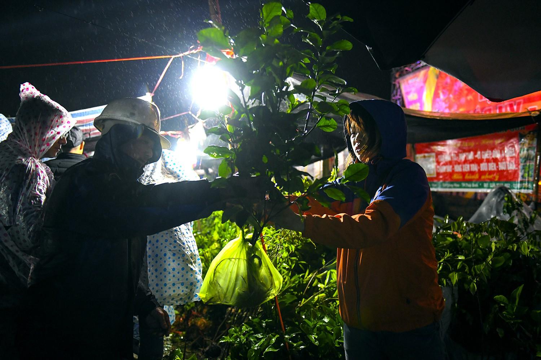 Đầu xuân đi chợ Viềng mua may cầu lành