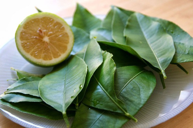 Dắt túi ngay những bài thuốc chữa bệnh từ lá chanh nếu bạn bị cảm sốt, ho do lạnh - Ảnh 1.