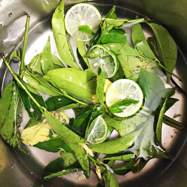 Dắt túi ngay những bài thuốc chữa bệnh từ lá chanh nếu bạn bị cảm sốt, ho do lạnh - Ảnh 3.