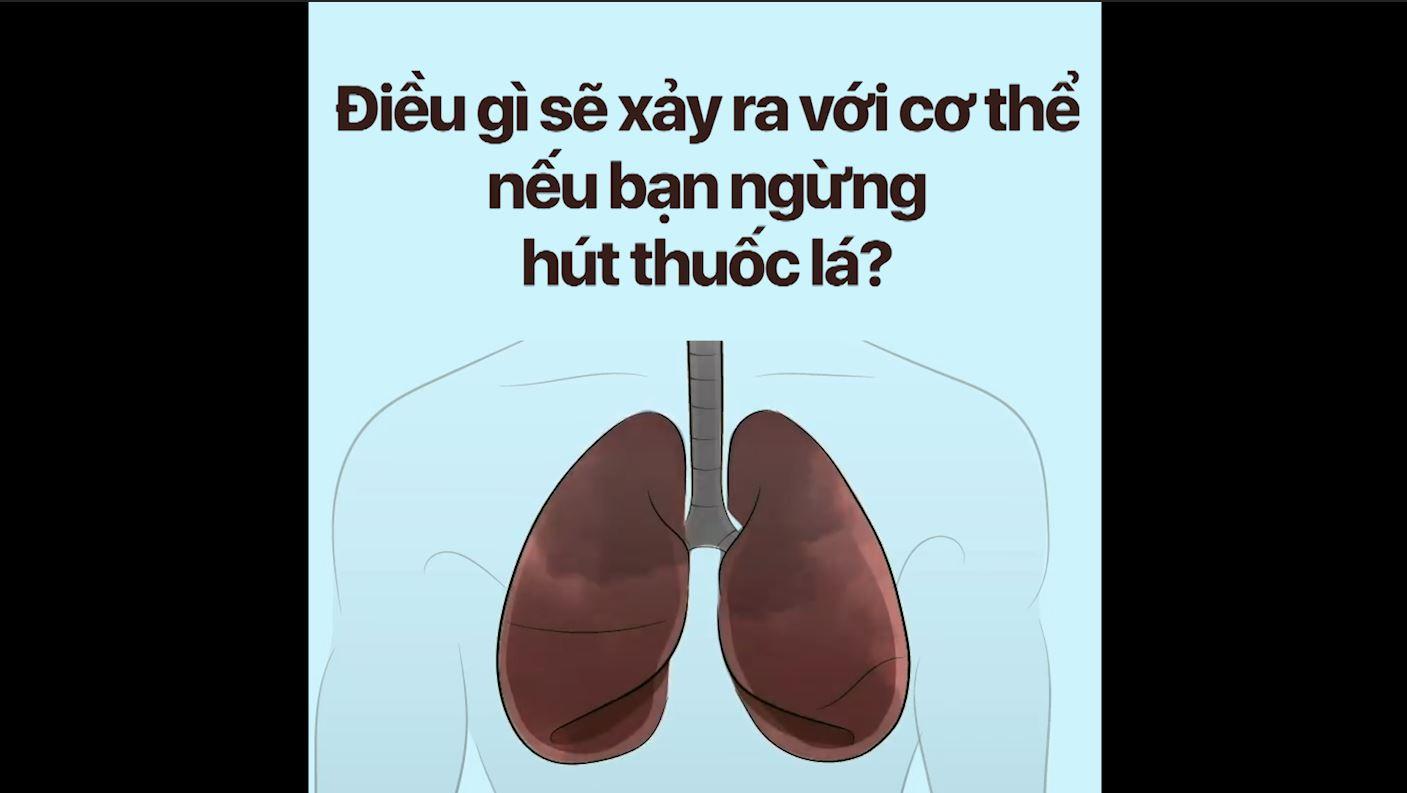 Điều gì sẽ xảy ra với cơ thể nếu bạn ngừng hút thuốc lá?