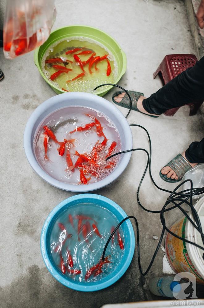 Ngày 23 tháng Chạp giản dị, đầm ấm của gia đình Hà Nội tứ đại đồng đường - Ảnh 2.