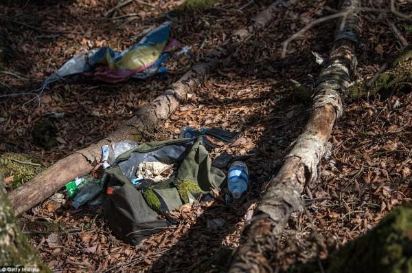 Khu rừng 'tự sát' ở Nhật Bản: Những hình ảnh tưởng chừng chỉ có trong phim kinh dị - Ảnh 11.
