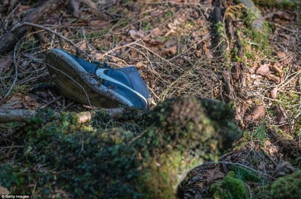 Khu rừng 'tự sát' ở Nhật Bản: Những hình ảnh tưởng chừng chỉ có trong phim kinh dị - Ảnh 7.