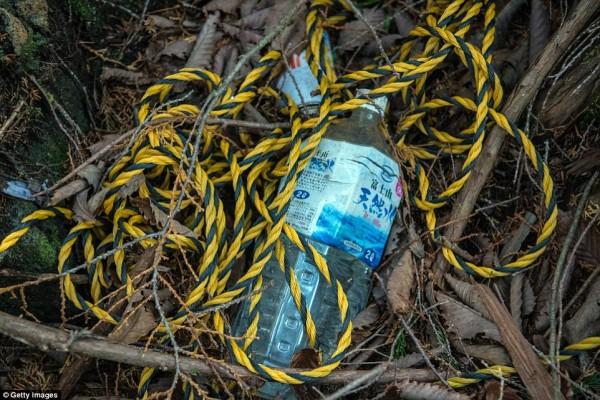 Khu rừng 'tự sát' ở Nhật Bản: Những hình ảnh tưởng chừng chỉ có trong phim kinh dị - Ảnh 10.