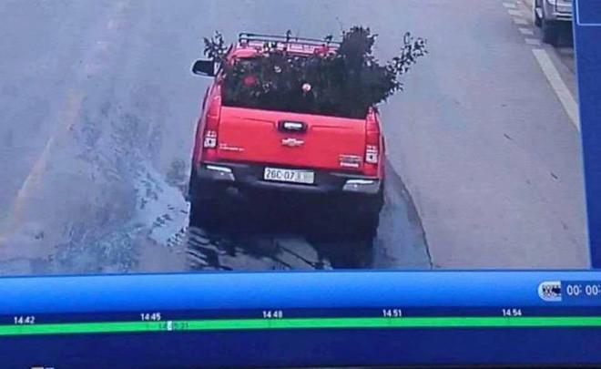 Công an trích xuất camera truy tìm chiếc xe ô tô vào vườn trộm cây hoa hồng cổ gần 20 tuổi - Ảnh 1.