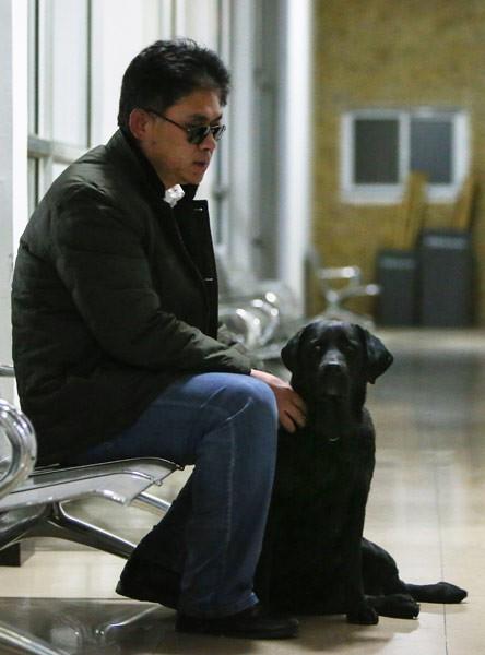 Chó dẫn đường của người đàn ông mù bị bắt trộm, một ngày sau con vật bất ngờ quay về nhà với thứ này trên cổ - Ảnh 5.