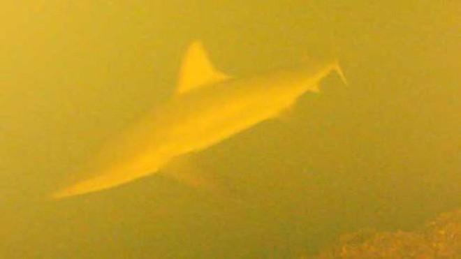 Thử đặt máy quay trong lòng núi lửa dưới đáy biển, khoa học bất ngờ khi tìm thấy thứ này - Ảnh 5.