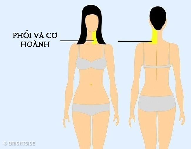 9 vị trí nếu thấy đau thì bạn nên cẩn trọng và đi khám càng sớm càng tốt - Ảnh 3.