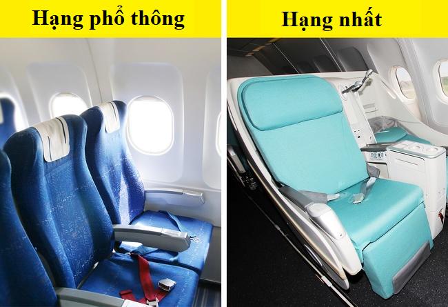Tại sao phần lớn ghế máy bay có màu xanh? Câu trả lời khiến nhiều người bất ngờ - Ảnh 2.